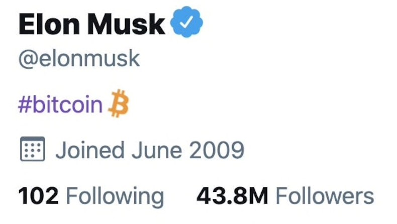 Bitcoin climbs 15% after billionaire Elon Musk changes his Twitter bio to  include it | Currency News | Financial and Business News | Markets Insider
